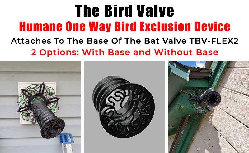 The Bird Valve - Humane One Way Bird Exclusion Device